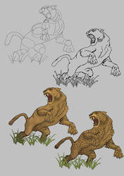 Leopard Drawing Process(Step by Step)