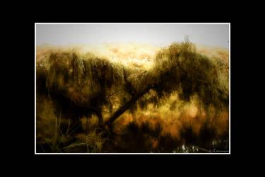 Sorrow by photomorgana