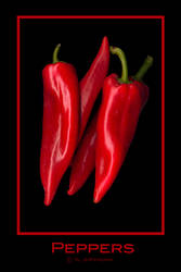 Peppers by photomorgana