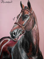 Hickstead - The Legend by Mine96