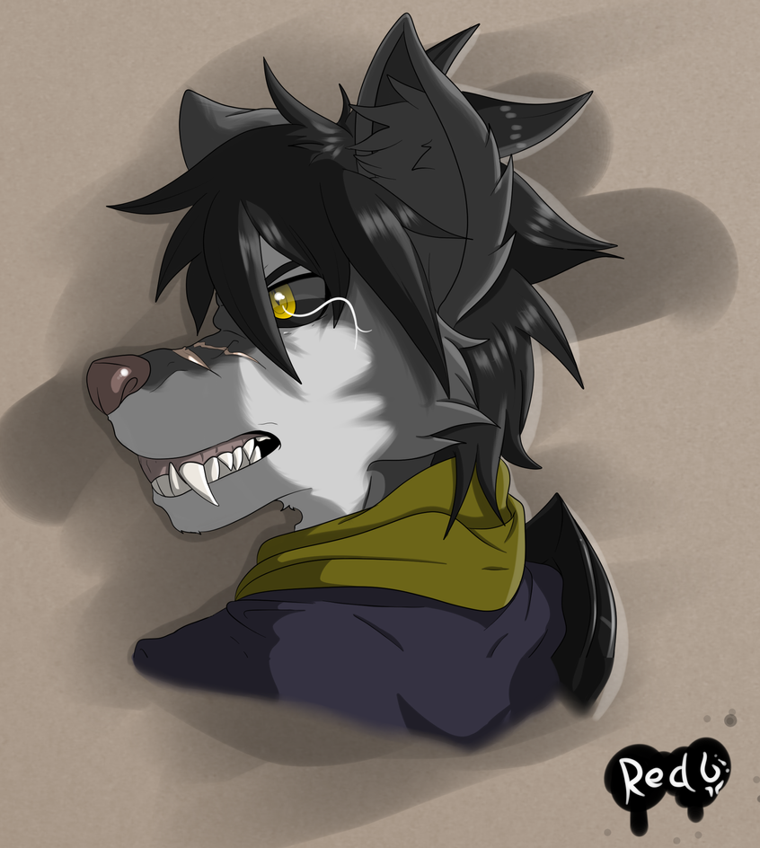 Connor the Wolf by Redfoxsoul