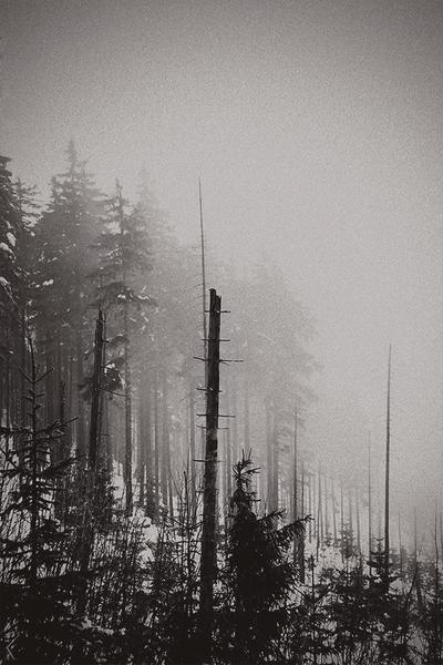 ekkoet av stillhet II by slavic-frost