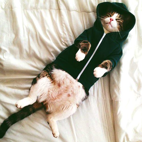 Sweater by MIFFthemorfin