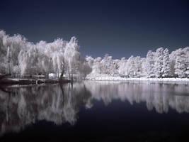 Infrared Lake by dantudose