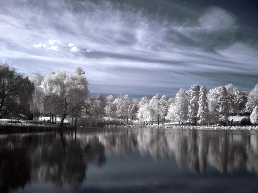 Winter, or Something Like it.. by dantudose