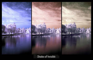 Shades of Invisible by dantudose