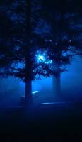 The Light by dantudose