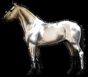 The Captain's Horse by iced-ninja