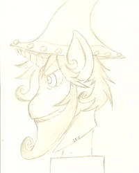 Head Shot: Bust: Young Starswirl the Bearded