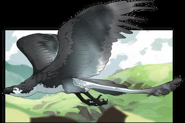 [Training] Gliding by mklhn