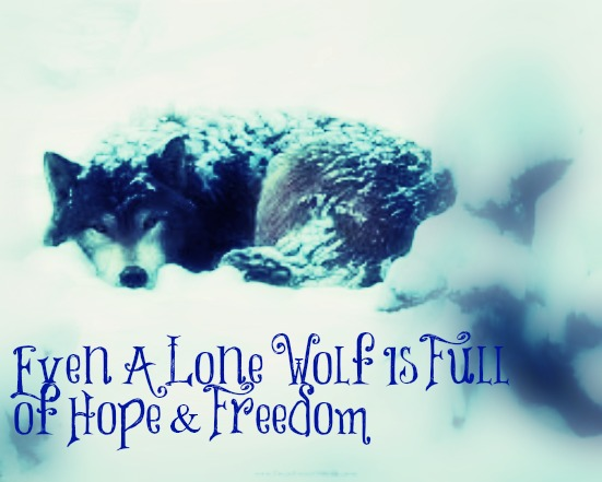 Lone wolf quotes - photo#6