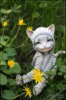 Spring grass - 01