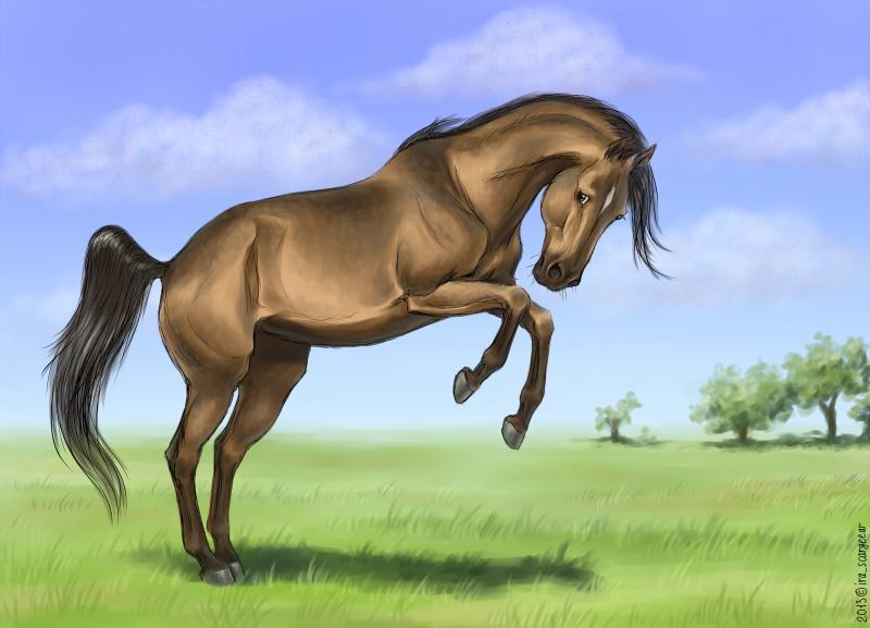 bucking horse by scargeear