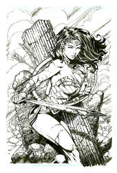 Wonder Woman Final David Finch and Richard Friend