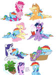 Dash's Pillows