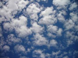 Cloudy flock by zertrin