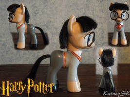 For My Nephew, Harry Potter Pony by KatneySK