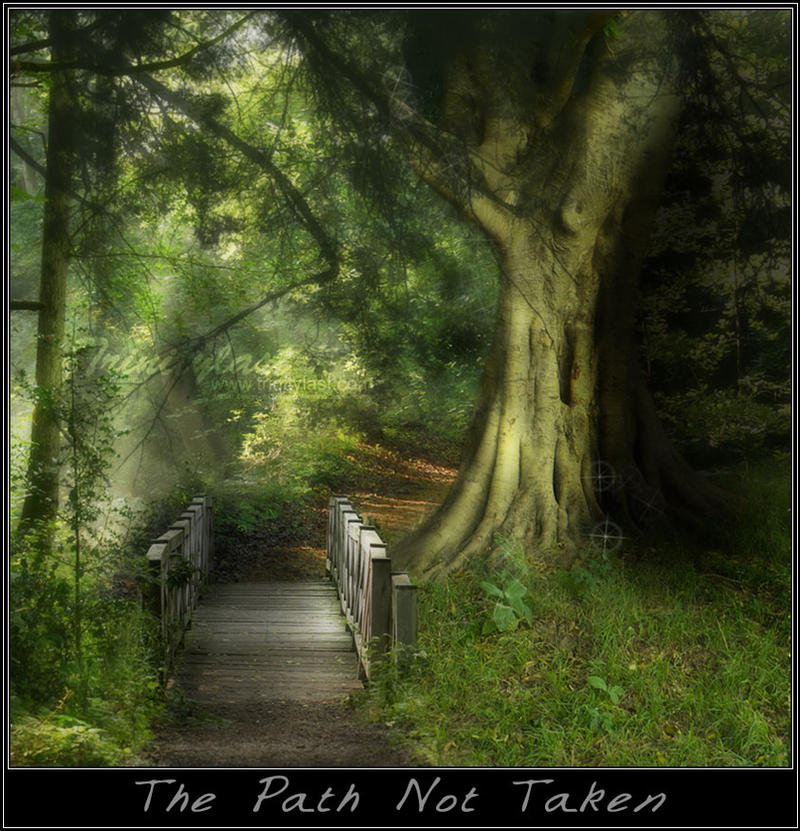 The Path Not taken