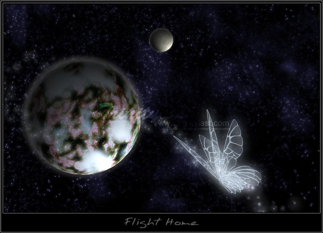 Flight Home by trinitylast