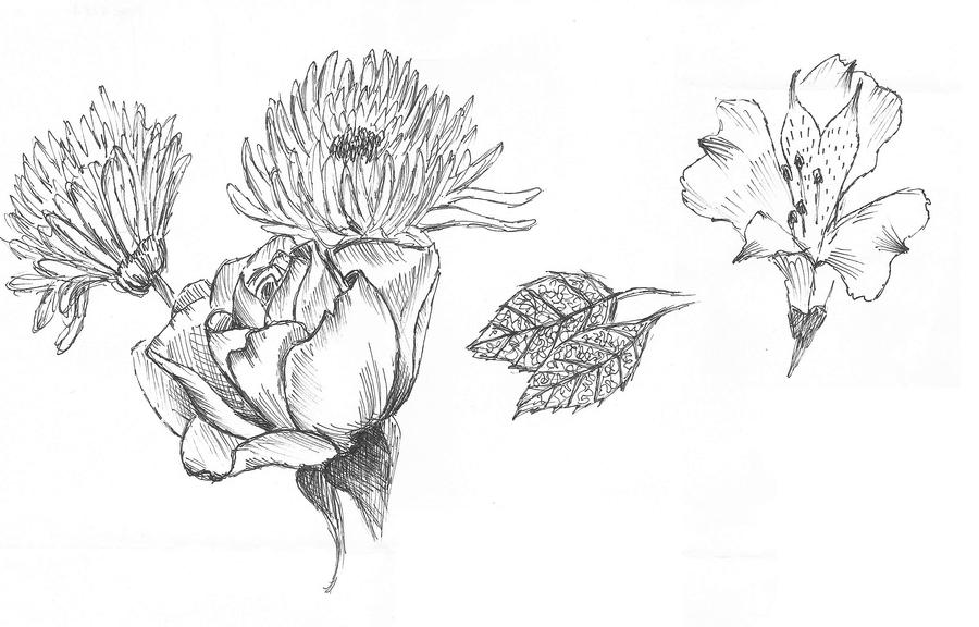 Art Drawing Of Flowers Using A Pen
