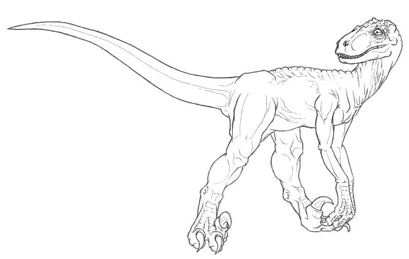 raptor coloring pages - utahraptor lineart by rydicanubis on deviantart