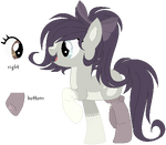 [OPEN] Pony Auction {COLLAB}