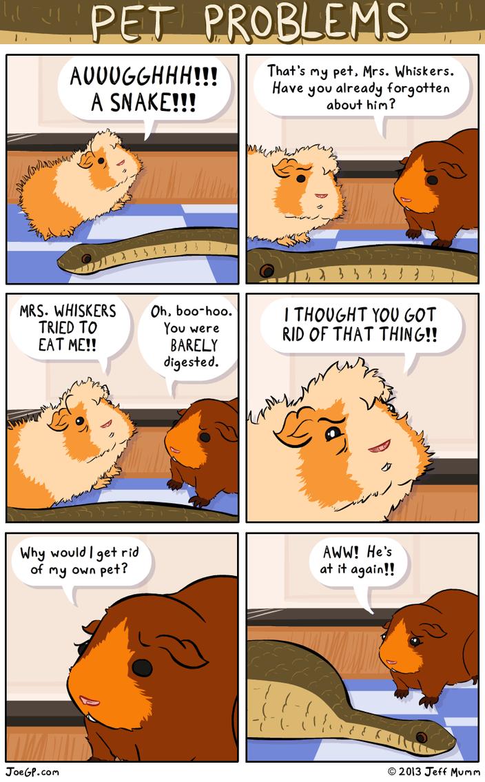Pet Problems by JoeGPcom