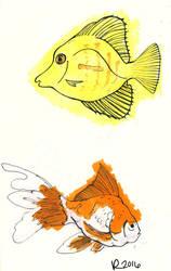 Sketchbook Fish by Jesness
