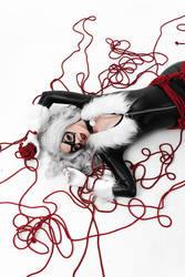 Black Cat shibari