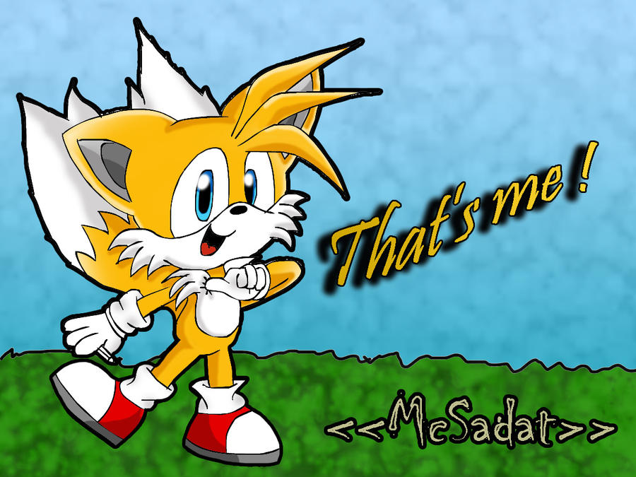 That's me Tails by McSadat