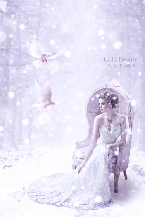 Cold Beauty by DigitalDreams-Art