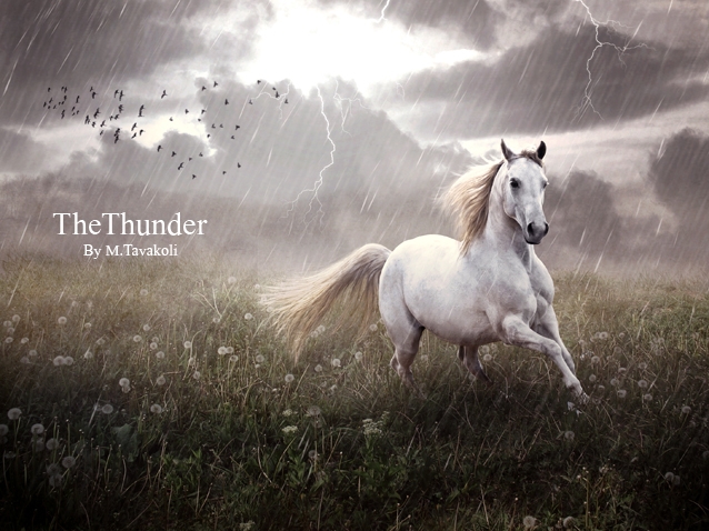 The Thunder by DigitalDreams-Art
