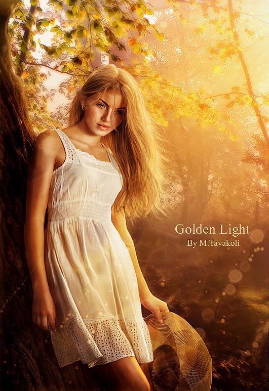 Golden Light by DigitalDreams-Art
