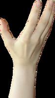 Hand stock