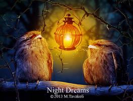 Night Dreams by DigitalDreams-Art