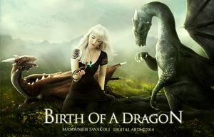 Birth Of A Dragon 2 by DigitalDreams-Art