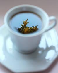 Floral Tea by GabiAngelo