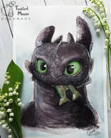 Toothless / Szczerbatek by twisted-mouse