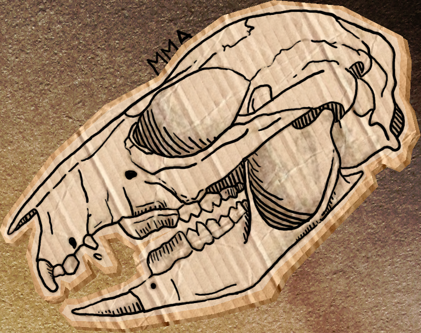 And A Rat Skull For You by MinkMonsterAlpha on DeviantArt