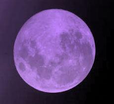 Purple Moon by MoonTart