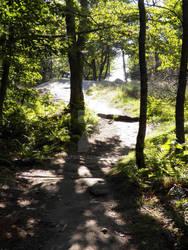Nature Path by Kutsuya