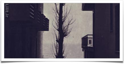 تضادهای خط ها در عکاسی