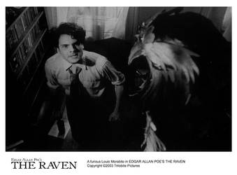 THE RAVEN 8x10-10