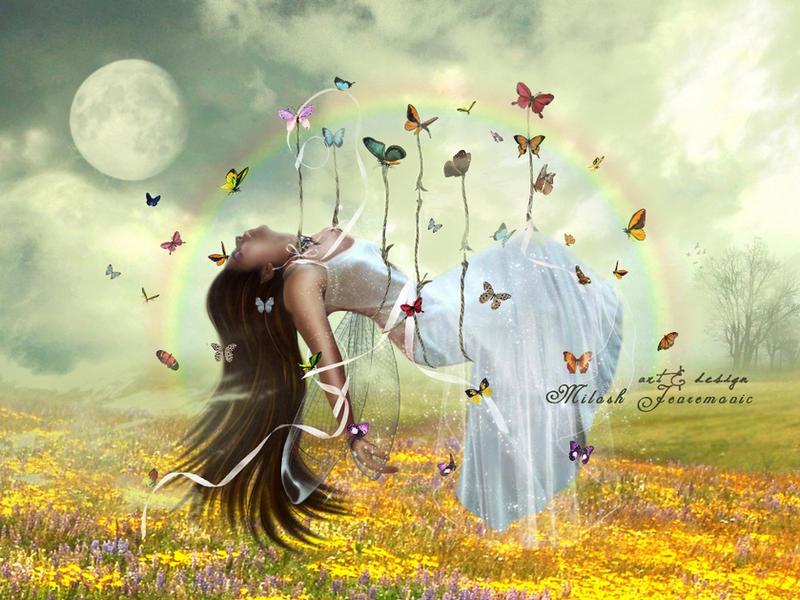 Butterfly Dream by MiloshJevremovic