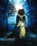 Cat Lady by MiloshJevremovic