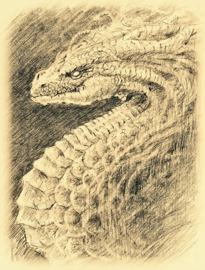 Medusa Dragon Sketch by hellmancrow
