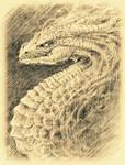 Medusa Dragon Sketch