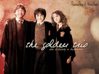 The golden trio by PrincessPatsy