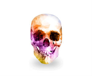 Skull by kenazmedia