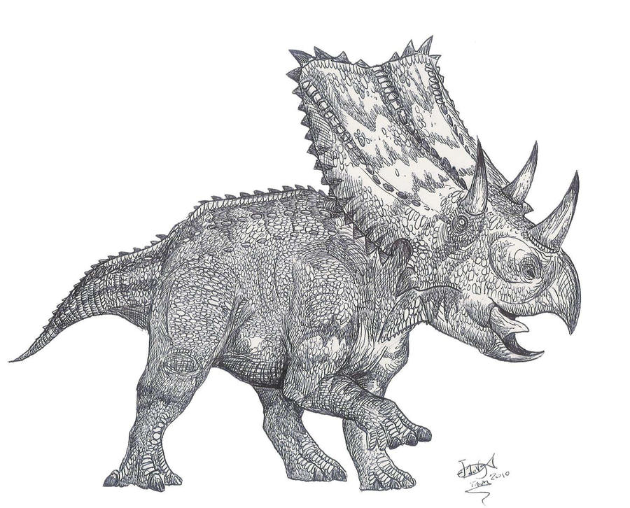 chasmosaurus_is_back_by_hodarinundu-d31zefh.jpg